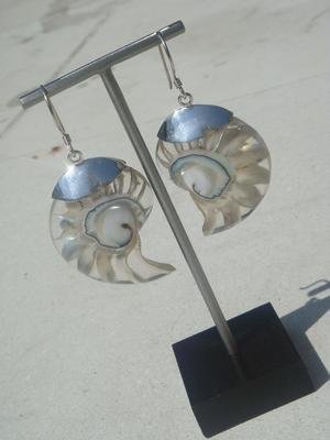 Silver örhängen som vit snäcka