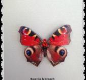 Färgglad fjäril med Swarovski