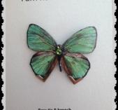 Grön fjäril med Swarovski