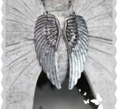 ö19 Fjäders örhängen